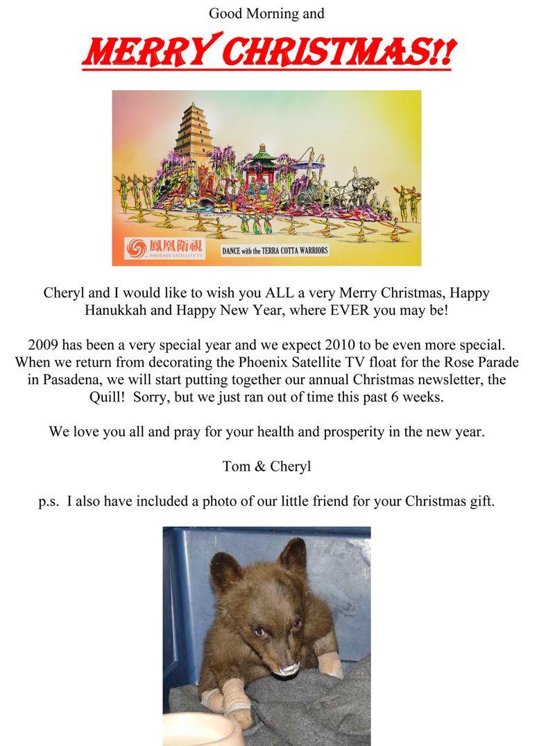 Merry Christmas - 2009